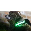 Iluminační obojek pro pejska, zelený
