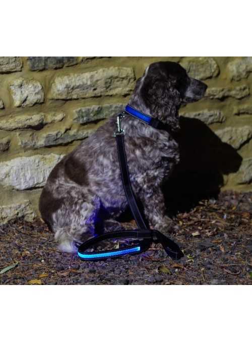 Svietiace vodítko na psíka, modré