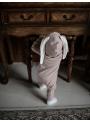 Ružové detské body s uškami ZAJKO